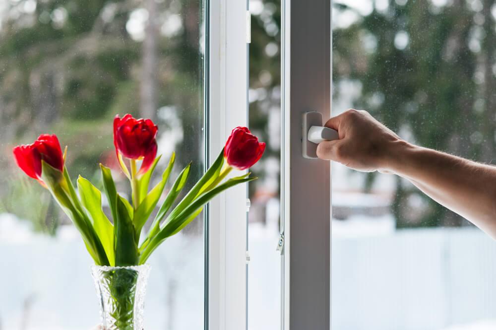 Tilt and Turn Window Flowers